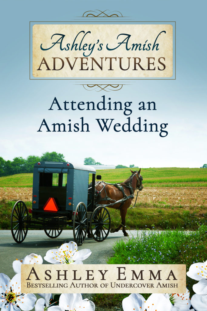 ashleys_amish_adventure_2_final
